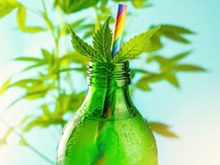 This Is One of the Top CBD Oil Stocks to Buy Now