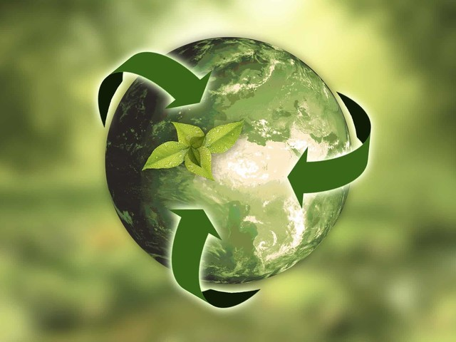 How To Start Recycling