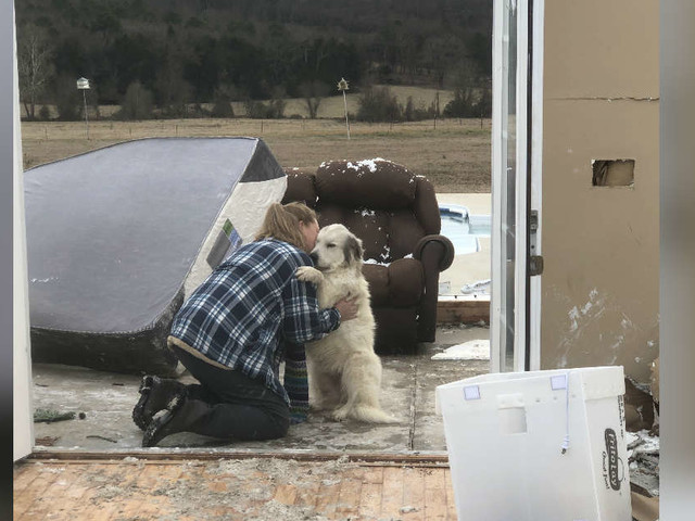 Dog Has The Sweetest Reunion With Her Mom After Tornado Destroys Home