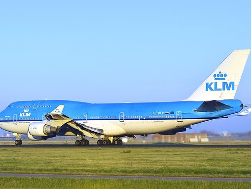 Husky dies in cargo hold of Air France-KLM plane during 11-hour flight from Amsterdam to LA