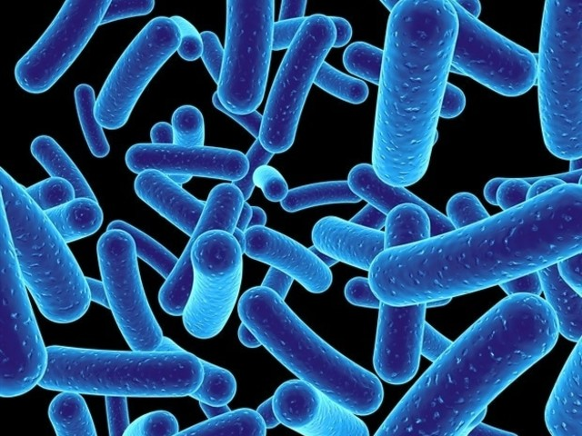 Environmental restoration can promote 'good' bacteria over 'bad'