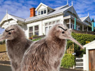 Kiwis only: New Zealand bans foreigners from buying homes