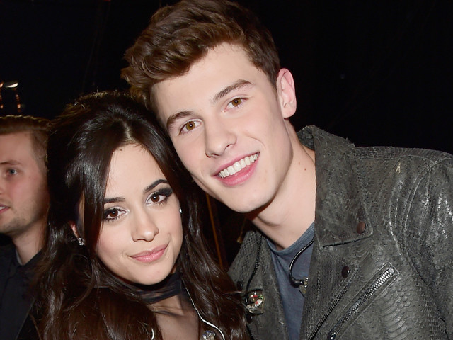 Camila Cabello Leaves Funny Comment on Shawn Mendes' Quokka Photo
