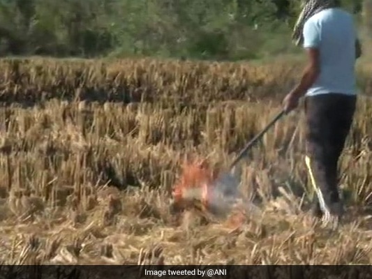 """Delhi's Pollution Levels """"Severe"""" After Rise In Farm Fire Cases"""