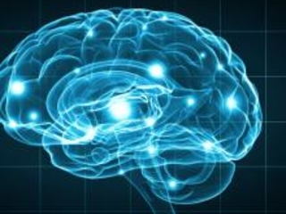 How Memory Works and 6 Tips to Improve It