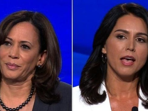 Liberal Media Is Freaking Out Over Gabbard's Destruction Of Harris