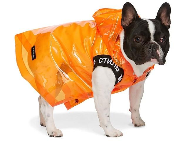 Online fashion platform Ssense launches dogwear