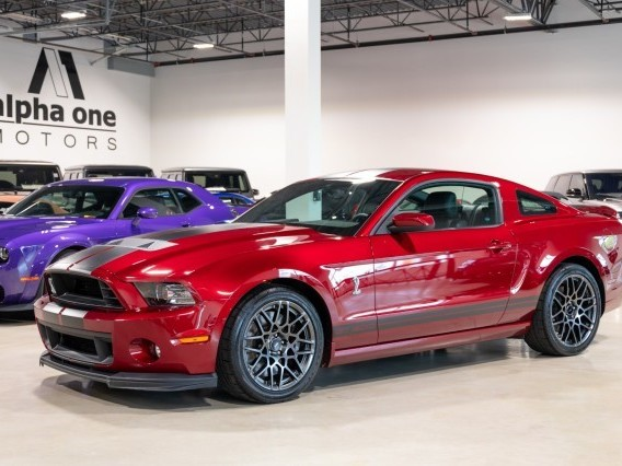 2014 Ford Mustang--Shelby--GT500