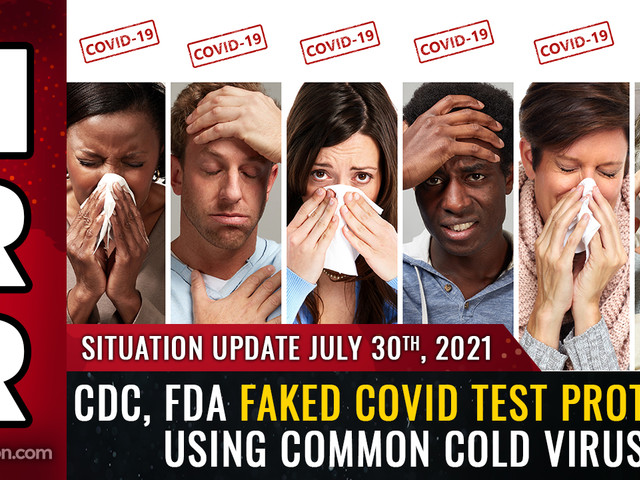 """BREAKING: CDC, FDA faked """"covid"""" testing protocol by using human cells mixed with common cold virus fragments... PCR tests are merely detecting the common cold"""