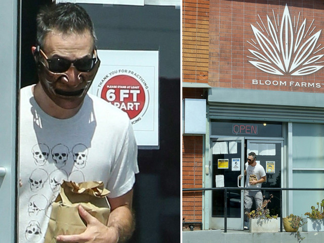 Freddie Prinze Jr. wears a bizarre mask to the dispensary and more star snaps