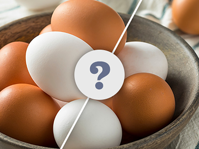 What Is the Difference Between Brown Eggs and White Eggs?