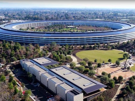 Apple's New HQ Has Beautiful Glass Panels That Employees Won't Stop Walking Into