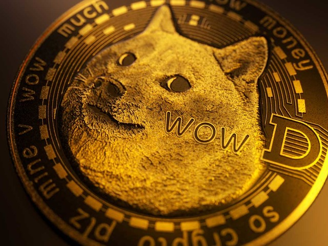 Dogecoin Is the Poster Child for an Epic Financial Bubble