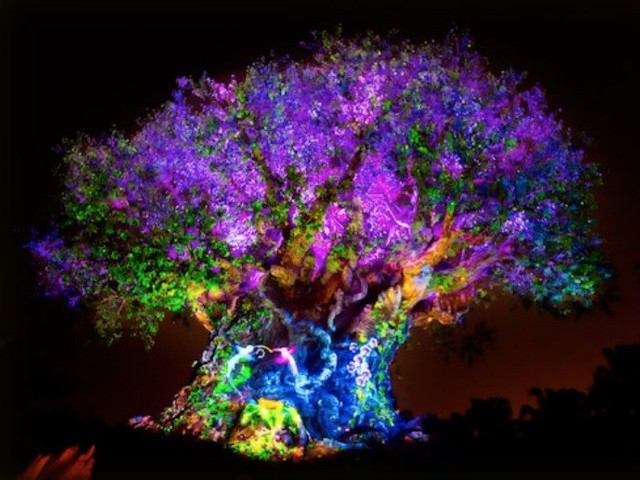 Tree of Life Awakenings at Disney's Animal Kingdom to Honor 'The Lion King' with New Additions