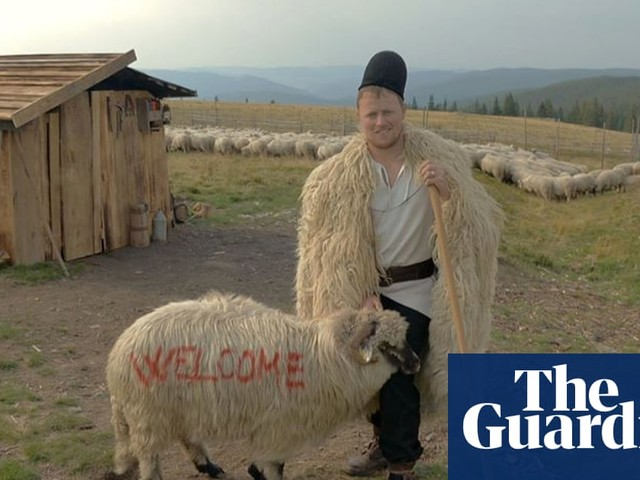 'A whole sheep for £18': how live exports are hurting farmers in Romania
