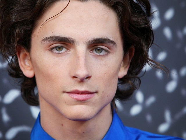 Timothée Chalamet's Zodiac Sign Makes Him Total Partner Goals