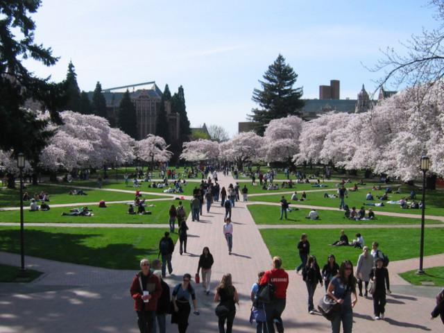 4 Tips for Writing Perfect University of Washington Essays