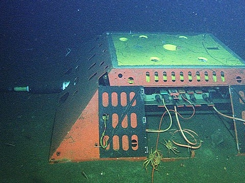 A network of cables at the bottom of the ocean is helping scientists detect earthquakes