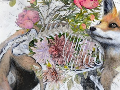 Fantastical anatomical drawings of flora & fauna depict death & renewal