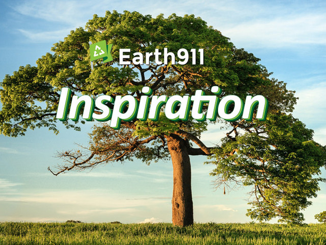 Earth911 Inspiration: Complex Is the New Normal