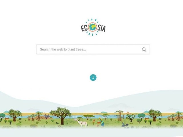 Ecosia Had 1,150% User Spike as the Amazon Fires Continue