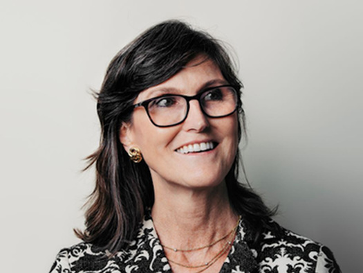 How The Holy Spirit Moved Cathie Wood To Become The Pied Piper Of Robinhood Traders