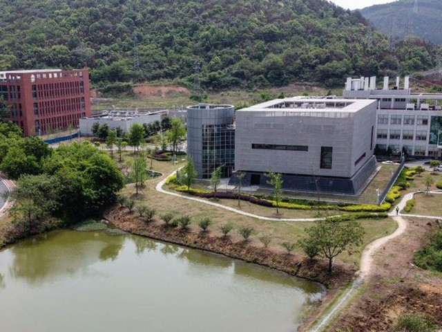 'An actual scandal': Report details how Wuhan lab and EcoHealth Alliance partnered to engineer coronaviruses in possibly unsafe conditions