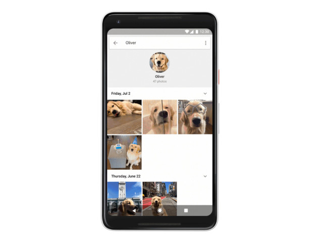 Google Photos makes it easier to find images of your pet cat or dog