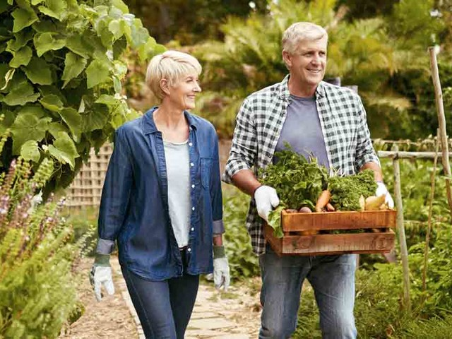 Top Gardening Tips to Build Better Health