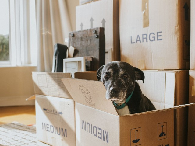What You Can Gain — Or Lose — Selling Your Home to an iBuyer