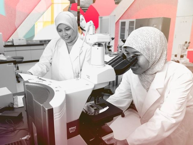 The STEM Paradox: Why Are Muslim-Majority Countries Producing So Many Female Engineers?