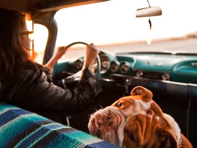 Spotify's new road trip playlist generator is pretty neat!