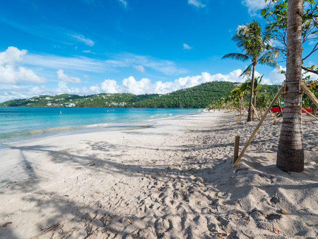 Royal Caribbean helps restore Magens Bay in St. Thomas