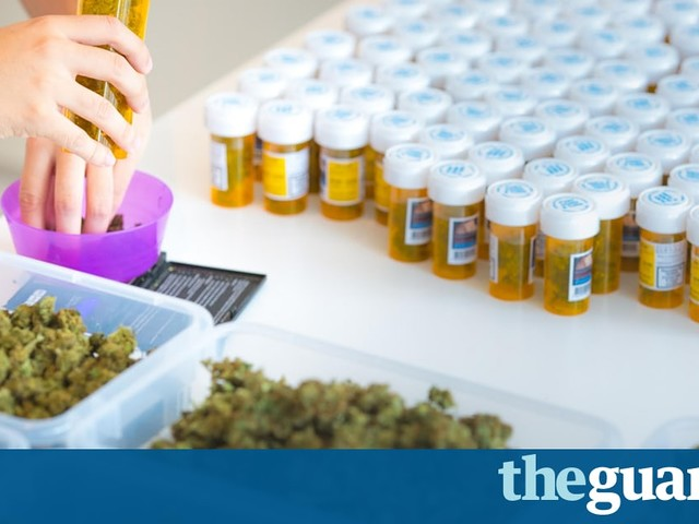 The Swiss cannabis farm aiming to supply 'legal weed' across Europe