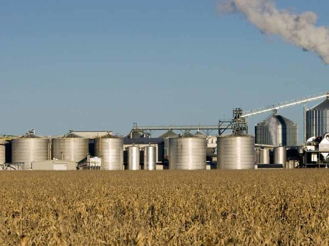 Ethanol Plant Using Treated GMO Corn Poisons Town