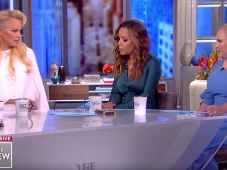 """A Breath Of Fresh Air"" As Pamela Anderson Takes Meghan McCain To Task Over US War Crimes"