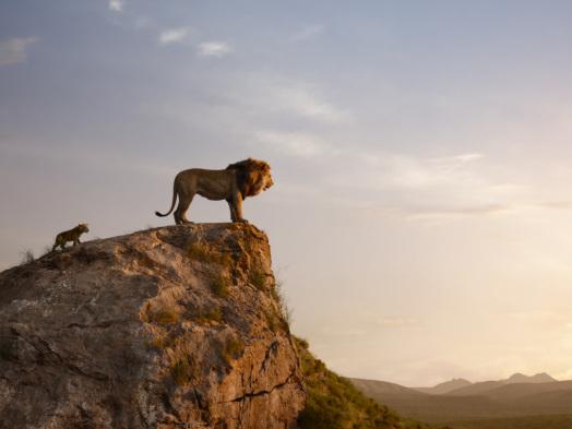 Film News Roundup: PETA Sponsors Rescued Lion in Jon Favreau's Name