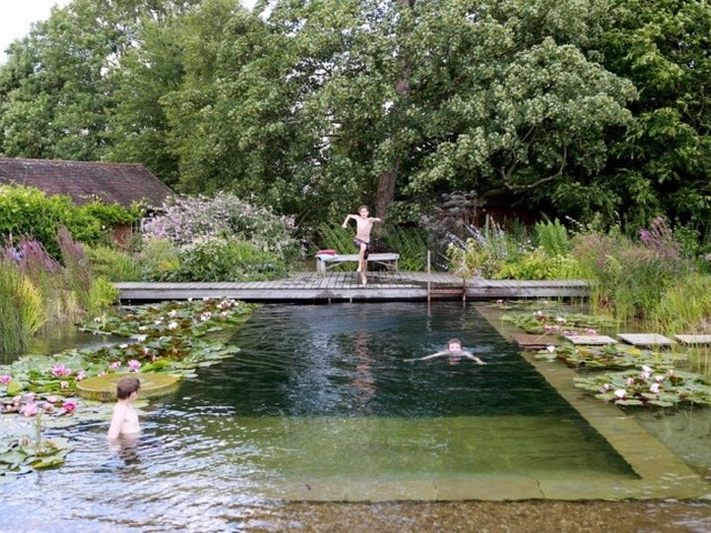 Water World: A Natural Swimming Pool, Lily Pads Included
