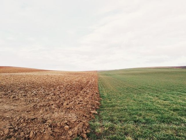 According To The Feds, 19 Million Acres Of Farmland Went Un-Planted With Crops This Year
