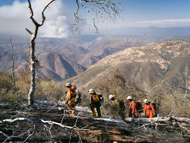 Prisoners Fight California's Wildfires for As Little As $1 an Hour As State Leaders Work to Keep Them Imprisoned