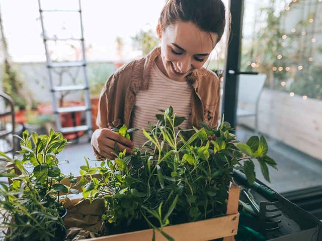 Is It Time to Start Growing Your Own Food?
