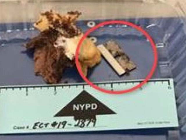 Razor blade found in cop's sandwich an accident: NYPD Commissioner Shea