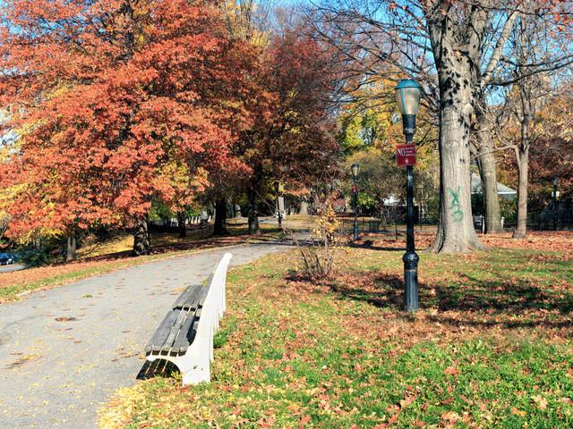 NYPD investigating violent child mugger in Morningside Park