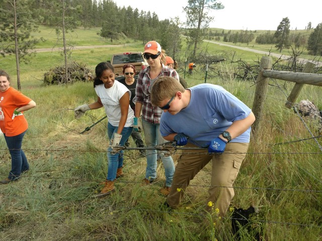 Clemson study seeks solutions to lack of diversity in environmental and natural resources fields
