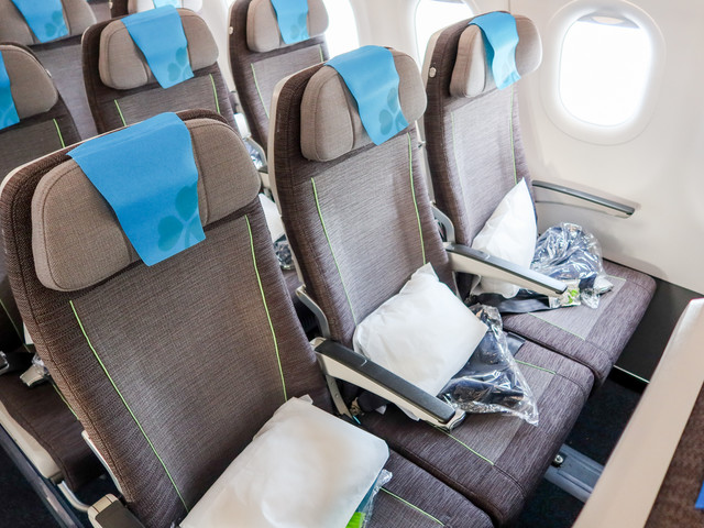 Great service, thin seat: Review of Aer Lingus on the A321neo in economy from Dublin to Philadelphia
