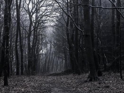 The Deep, Dark Bretton Woods