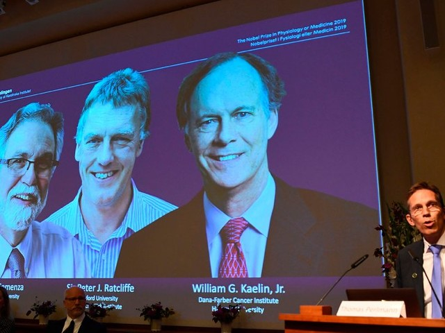 Nobel Prize in Medicine Awarded to 3 for Work on Cells