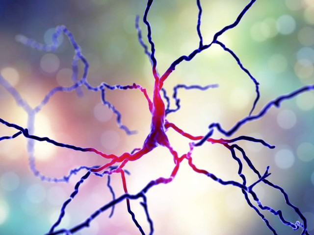 Medical News Today: Parkinson's: New treatment approach shows promise in brain cells