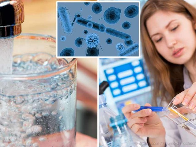Over 267 Toxins Found in Public Tap Water
