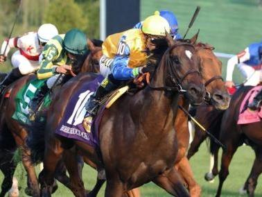 UPI Horse Racing Roundup: Robert Bruce wins Arlington Million